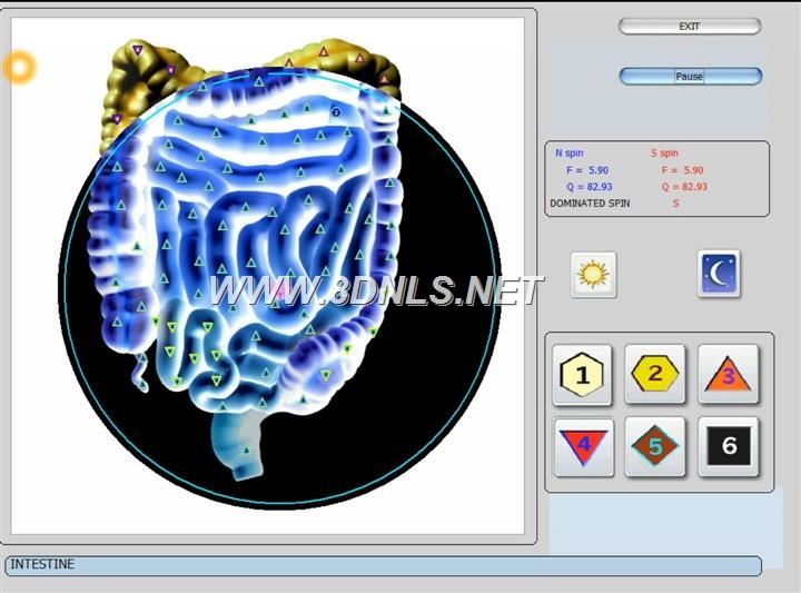 vector 8d IRLS 9d nls software (32)