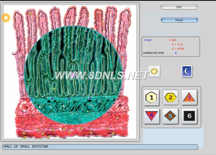 vector 8d IRLS 9d nls   software (36)