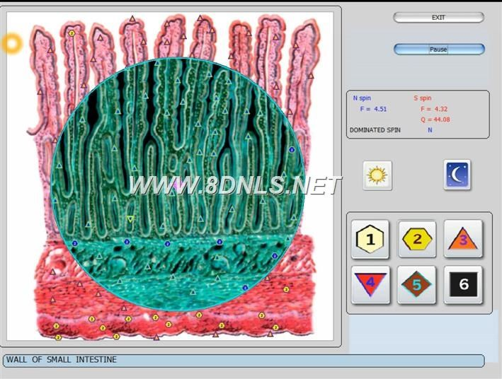 vector 8d IRLS 9d nls   software (38)