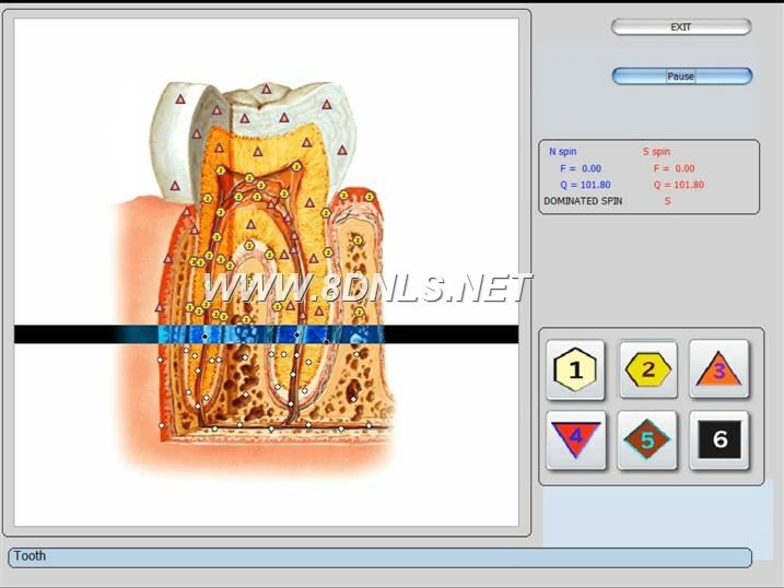 iris 8d software