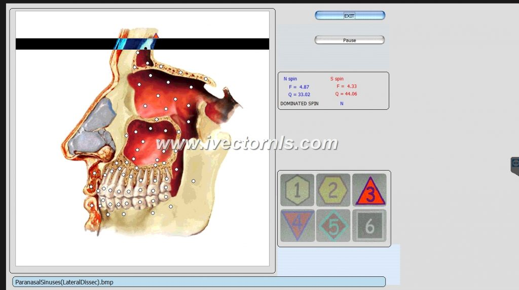 9d nls health analyzer