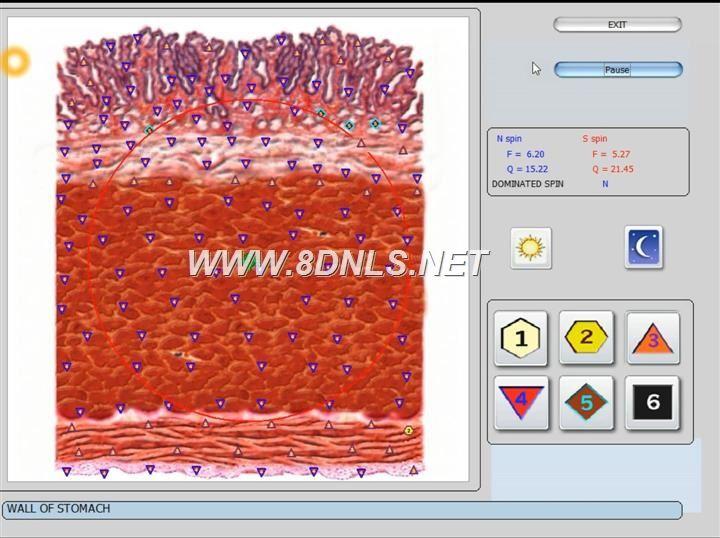bioplasm 9d nls